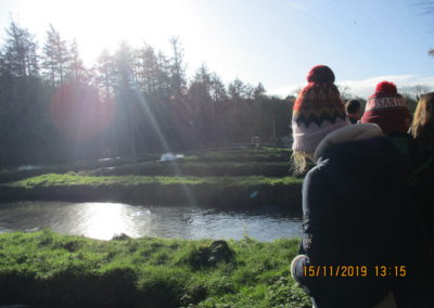 Visit to Goatsbridge Trout Farm
