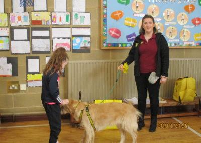 Dog Trust Visit